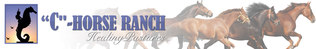 C-HORSE RANCH